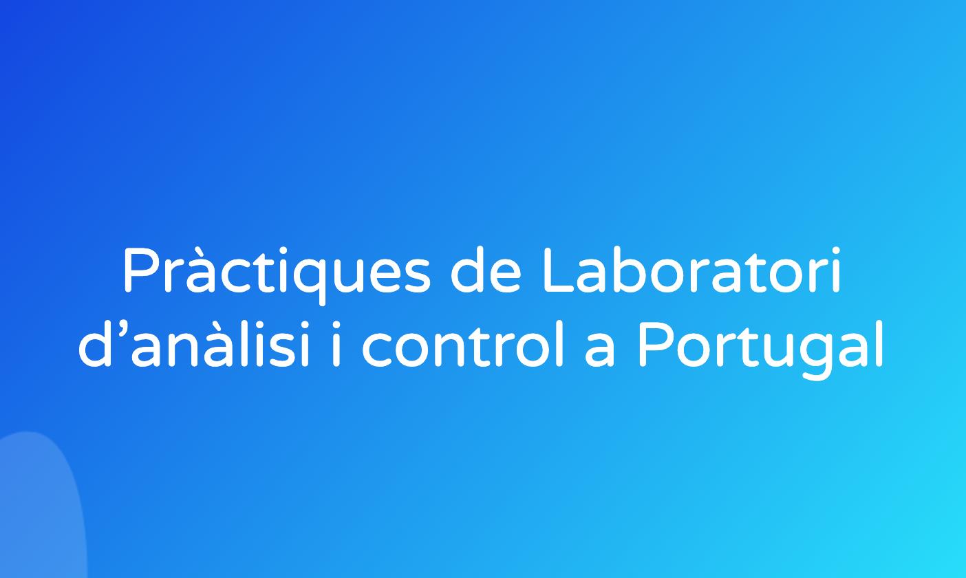 Pràctiques de Laboratori d'anàlisi i control a Portugal